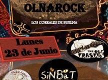 140623-sj-concierto-olna-rock