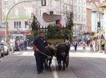 140621-sj-desfile-031