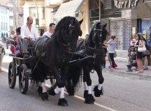 140621-sj-desfile-063