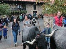 141115-feria-ganado-cieza-090