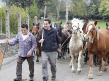 141123-feria-ganado-san-felices-rc-072