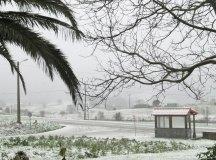 150204-nevada-comarca-070-anero