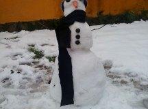 150204-nevada-comarca-107