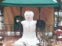 150204-nevada-comarca-113