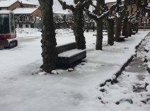 150204-nevada-comarca-52-Los-Corrales12