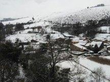 150204-nevada-comarca-72-Cohicillos