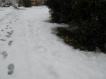 150204-nevada-comarca-8032150204-nevada-comarca-8031Los-Corrales6