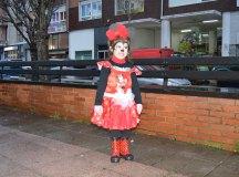 150213-carnavales-los-corrales-138
