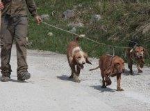 150403-trail-tejas-dobra-cesar-2-052