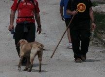 150403-trail-tejas-dobra-cesar-2-187