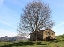 150403-trail-tejas-dobra-ramon-130