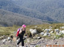 150403-trail-tejas-dobra-216