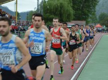 150516-gran-premio-atletismo-256
