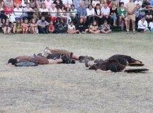150829-guerras-cantabras-079