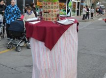 160205-carnavales-los-corrales-107