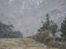 160325-trail-tejas-dobra-ap-088