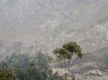 160325-trail-tejas-dobra-ap-093