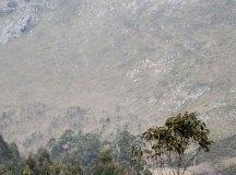 160325-trail-tejas-dobra-ap-096