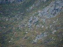 160325-trail-tejas-dobra-ap-123