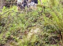 160508-trail-monte-brazo-sc-175