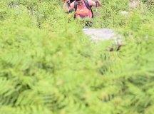 160508-trail-monte-brazo-sc-224
