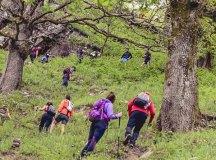 160508-trail-monte-brazo-sc-228