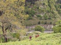 160508-trail-monte-brazo-sc-239
