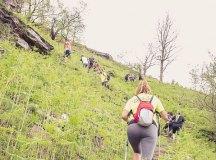 160508-trail-monte-brazo-sc-340