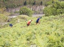 160508-trail-monte-brazo-sc-362