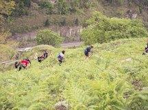 160508-trail-monte-brazo-sc-384