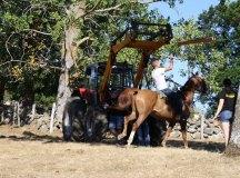 160821-trail-pantano-del-ebro-221