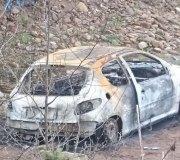 170313-coches-quemados-Peugeot-206-pedreguera