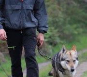 170414-trail-tejas-dobra-2de3-0288