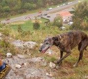 170414-trail-tejas-dobra-3de3-0090
