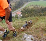 170414-trail-tejas-dobra-3de3-0175