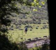 170507-trail-brazo-recorrido-cf-0007