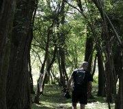 170507-trail-brazo-recorrido-cf-0141