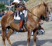170826-guerras-cantabras-136