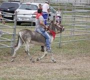 170910-carrera-caballos-molledo-002