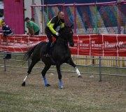 170910-carrera-caballos-molledo-009