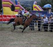 170910-carrera-caballos-molledo-021