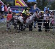 170910-carrera-caballos-molledo-025
