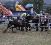 170910-carrera-caballos-molledo-029