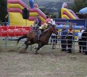 170910-carrera-caballos-molledo-032