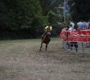170910-carrera-caballos-molledo-033
