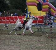 170910-carrera-caballos-molledo-041
