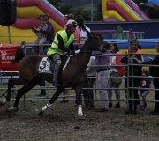 170910-carrera-caballos-molledo-047