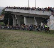 170910-carrera-caballos-molledo-049