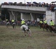 170910-carrera-caballos-molledo-062
