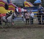 170910-carrera-caballos-molledo-069